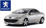 2008 Peugeot 307 cc Manual Reparacion y Taller